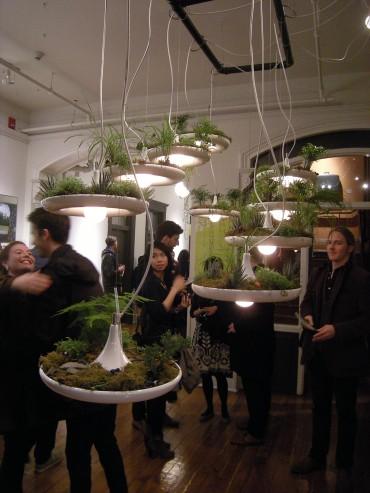 Plant Lights