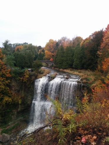 Webster falls